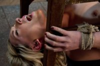 19yr old Lily LaBeau looks like that Gossip Girl blond.  Bound in a humiliating ass up position, Lilly is punished and made to anally cum like a whore