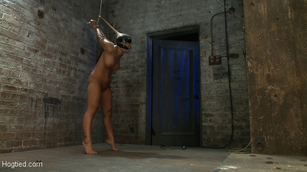 Super hot girl from Hawaii, walks into the wrong sub basement, bound stripped, gagged and made to cum over and over.  This slut can't stop cumming.
