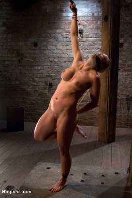 Super hot blond pushed to the edge of sanity and back.  Brutal positional endurance bondage, with orgasms that we rip out of her helpless body!
