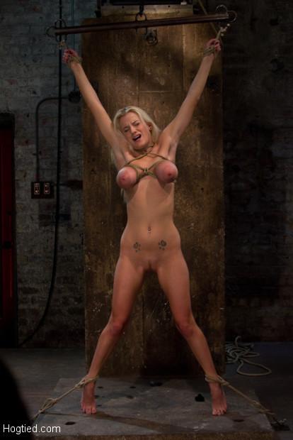 Haley cummings bondage