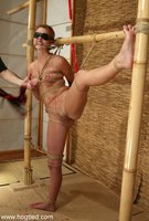 Ivy and Torque exhibit flogging, candle, and single tails pain.