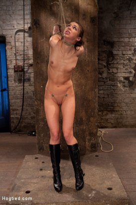 Sexy, long-legged, beautiful girl next door suffers tight bondage, nipple clamps, made to cum over and over. Elbows bound tightly with a strappado