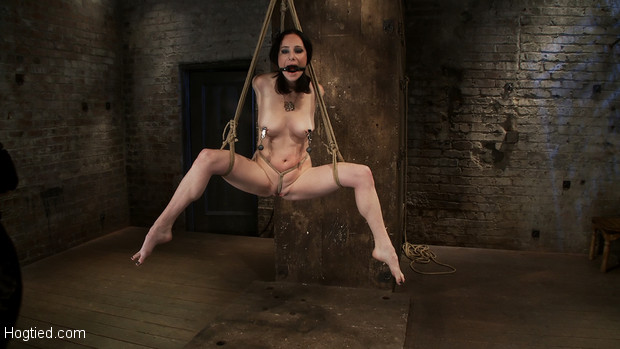 Cute girl from our marketing department decides to try out Hogtied.  Lets not disappoint.  Brutal elbow and crotch rope suspension, caned and flogged.