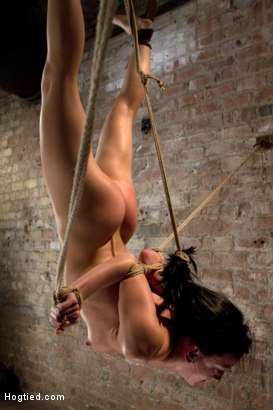 One of the most evil bondage predicaments you will see this week. Inverted, elbows bound, hair tied & back severely arched. brutal crotch rope. OUCH!