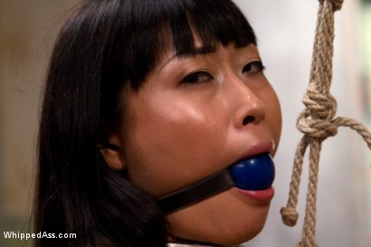 Adroable Asian sub slut is spanked, tit tortured, tied spread eagle and strap-on fucked to multiple orgasms for your viewing pleasure!