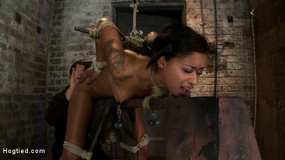 Brutal bondage, nipple torture, one of the most amazing asses ever seen. This girl is a sweaty mess as we rip massive orgasms from her quivering body.