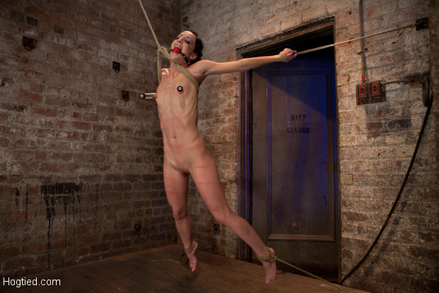 Girl next door suffers though her first live show.  Bound spread & brutally suspended, she is caned, made to cum while flying, Category 5 at its best!