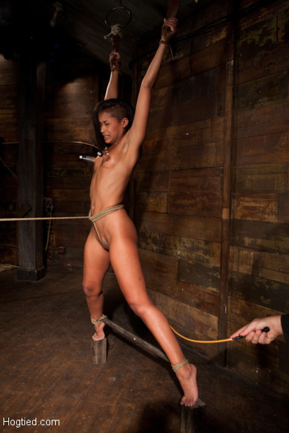 Skin Diamond is bound, made to tip toe on 2 small blocks, her body stretched.  A crotch rope pulls Skin off the blocks into a full wrist suspension!