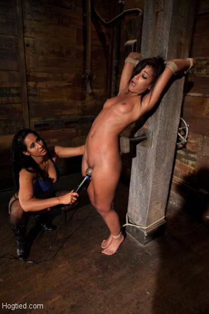 Skin is bound to a beam and a back breaker arches her to the limit, her body is brutally flogged then she is made to cum over & over.  Brutal Arch!