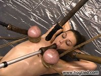 Mallory Knots is Hogtied in the most creative ways.