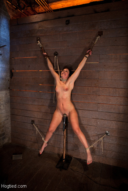 Wrist suspension while impaled. Each orgasms weakens, & impales her deeper & harder onto the dildo vibrator, which makes her cum harder, which makes..