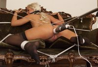 Tied up and vibrated!