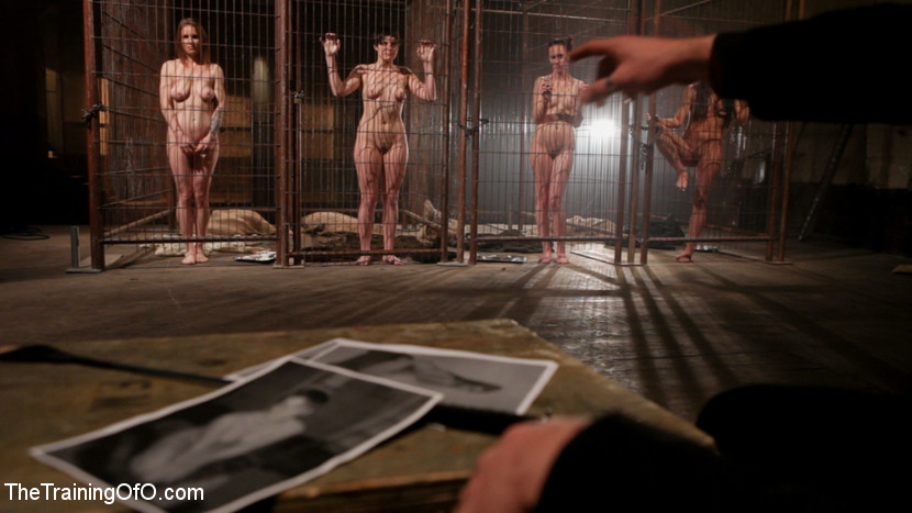 Naked women slaves in cages phrase magnificent