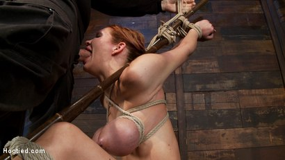 Massive-boobs-a-category-5-suspension-and-skull-fucking-Brutal-bondage-devastating-orgasms-Art