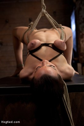 Watch hot young brunette Bryn Blayne get put to the test ending 4 challenging bondage positions, fucked in every hole, and given mind blowing orgasms.