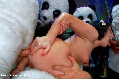 Panda Gangbang!!!!! Beautiful brunette fantasizes about being followed and gangbanged by a pack of angry panda bears!!! Furry gangbang!
