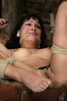 Electric lesbians share dildos on the farm.