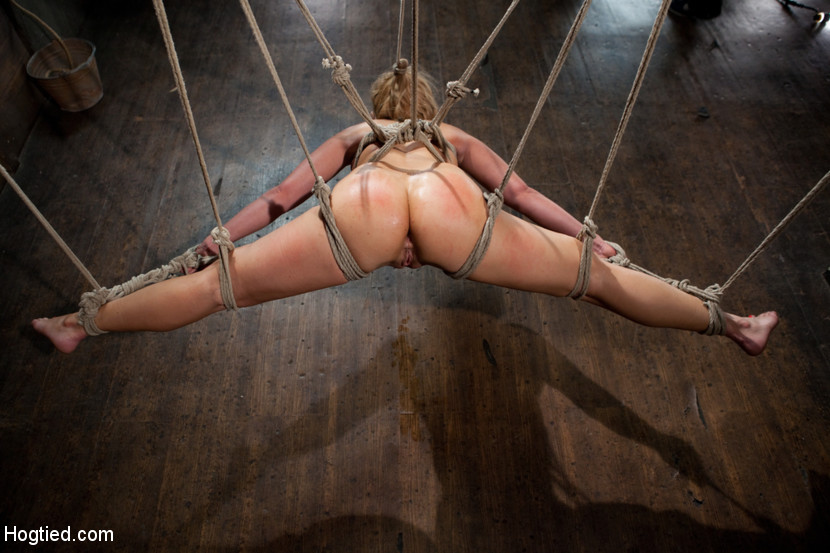 Online submissive assignment bdsm