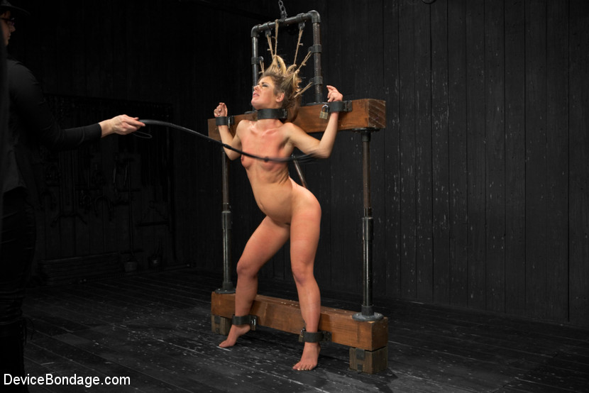 Bitch device bondage the pillory hot and sloppy