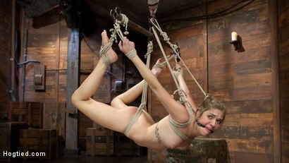 Welcome-Lia-Lor-to-HogTied
