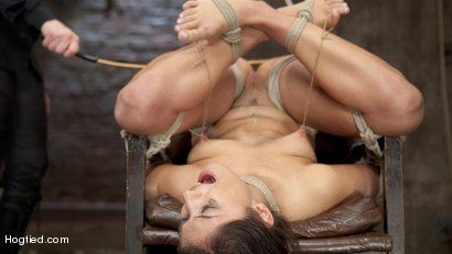 Scarlet-Banks-Cums-to-HogTied