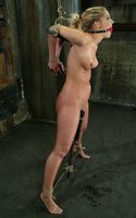 Another new face at Hogtied, Hollie Stevens, first time BDSM.