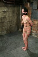 Cute french girl gets Hogtied!
