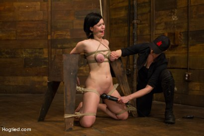 Hot newbie Belle Noire with big natural breasts gets her anal cherry taken, gets an intense crotch rope predicament & cums like a common whore.