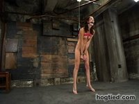 Newbie Hailey cums and cums in spite of herself.