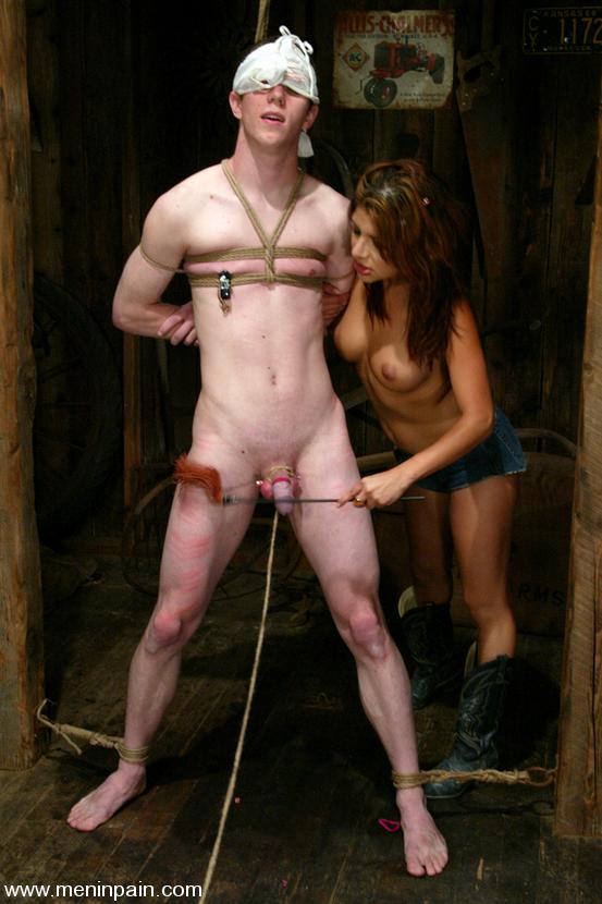 Femdom castration pictures das