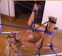 Hogtied and put on display.