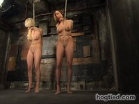 Lacie Hart and Sash Sparks enter a bondage relationship.