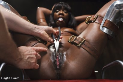 Runway model Ana Fox tied in Japanese bondage, gyno chair with tight gag and lot's of drool, pliers on the clit, suspended doggie fuck