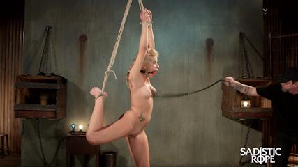 Femdom chastity adobe agreement form