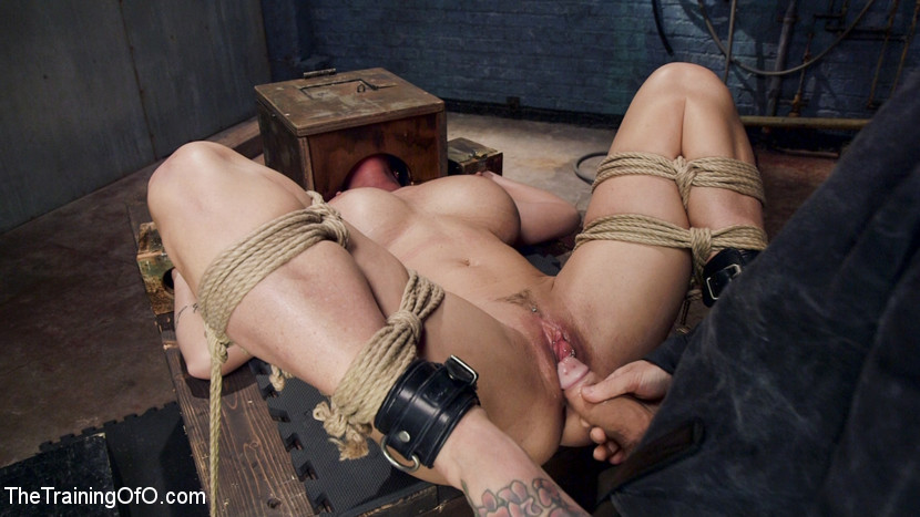 Submissive head in box orgy