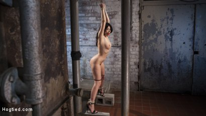 Ava Dalush gets her first taste of extreme bondage and torment at the hands of The Pope.