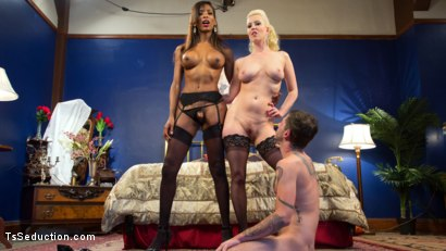 Tristan is lured back to Cherry's house where she demands a hot nasty threesome with her gorgeous girlfriend Natassia!