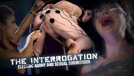 The-Interrogation-Electric-Agony-and-Sexual-Submission