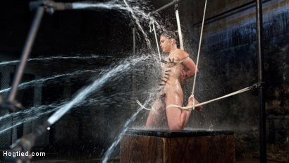 This update is full of extreme water torment, tight bondage, grueling suffering and orgasms!!