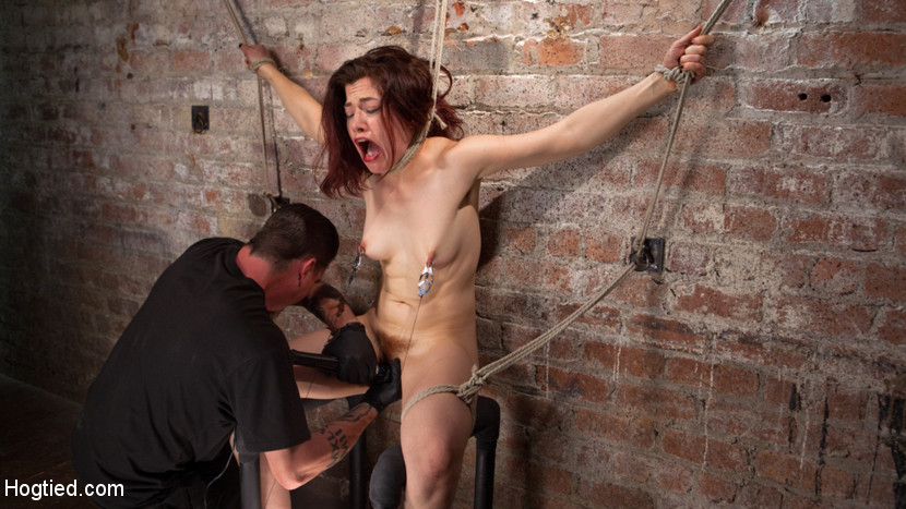 How she Hogtied and fucked porn