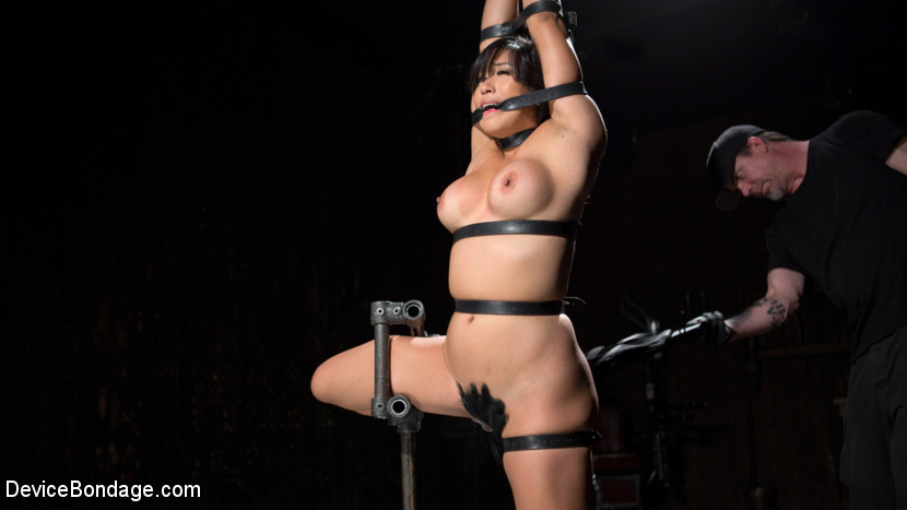 Superb upload Asian bdsm hd love