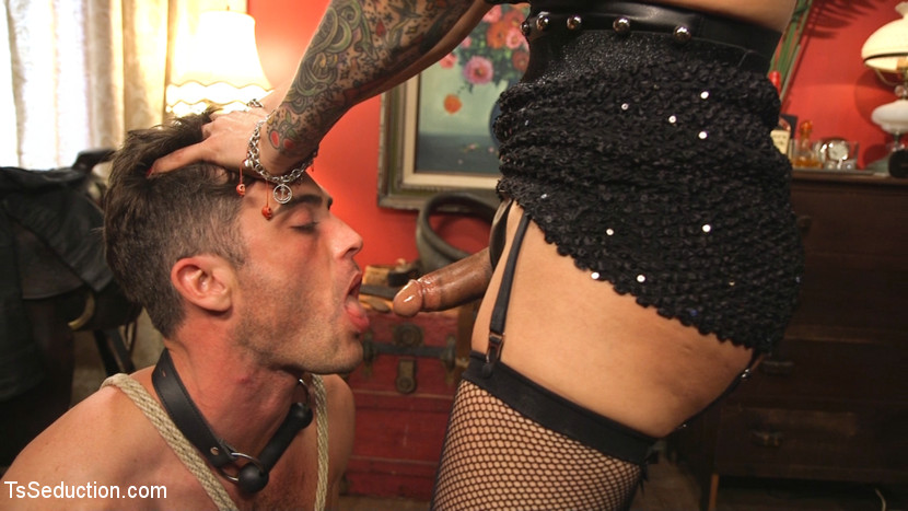 This lady of the night has a pounding hard tool ready to make love. TS Foxxy is the top lady of the night of Old Town and Lance Hart is lucky to be seduced and used by her pounding cruel cock, sexy round anus and delicate lips! elegant anus fucking, deep gagging give suck jobs and two fat loads of cum!