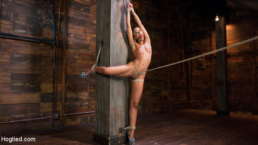 Skin diamond is anguished in inhuman bondage and made to cumshot. We begin in a simple yet effective hands over the head standing tie. Her clothes are ripped away exposing her exciting body to be tortured. The bondage is manipulated in a way to contort her body and put her in predicament bondage. A crotch rope is added to finish the tie and make Skin completely helpless.Skin is on her back for the next scene with her body in a very vulnerable position. Clothespins are applied to all of the sensitive spots on her body and then flogged off as she is made to ejaculate uncontrollably. Next we have Skin in a hogtie suspension. Nipple clamps are added and then pulled on to make this slut scream. Her feet are tortured and then we fuck her cunt until she begs for it to stop.In the final scene Skin has all of her body weight resting on her cunt that is perched atop a sybian. She is tortured as orgasm after orgasm pour out of her cunt until The Pope has to physically hold her place because she is thrashing around so violent from ejaculateming so much!