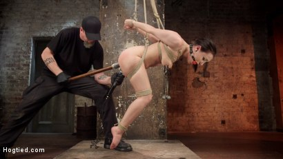 Petite-Bondage-Slut-Gets-her-Holes-Destroyed-in-Grueling-Bondage