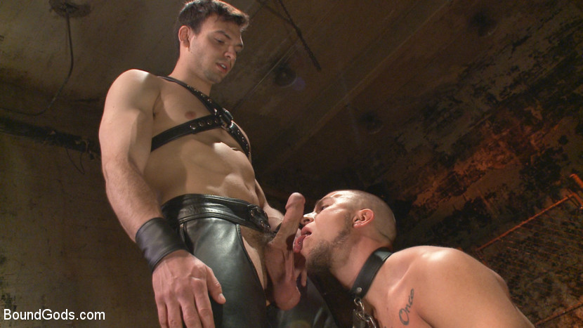 Strong Gays Tied In Rope And Leather