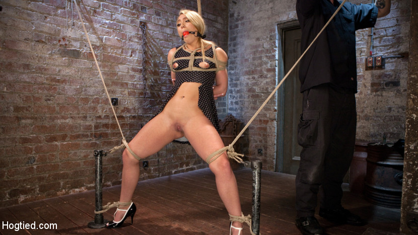 Aj applegate submits to grueling bondage and torture. AJ doesn't do many bondage shoots any more, so when we found out that she wanted to come back to Hogtied, we jumped at the chance to shoot her. She is quickly tied up in a standing/squatting stress position. Her clothes are ripped away and the anguished begins. Next she is face down with her legs spread wide on our Y table. After the magnificent butt is spank it is filled with a mbuttive dildo. Her kitty is next so that we can double break into her. We finish her off with an kitty hook tied to her hair.She is suspended in a side suspension with one leg up to give access to her honey hole.The Pope takes turns make love her throat and kitty until she is exhausted from orgasms.The day is finished with a hogtie that slowly becomes more and more grueling as the scene goes on. Once she can't take any more her kitty is fuck into explosive orgasms.