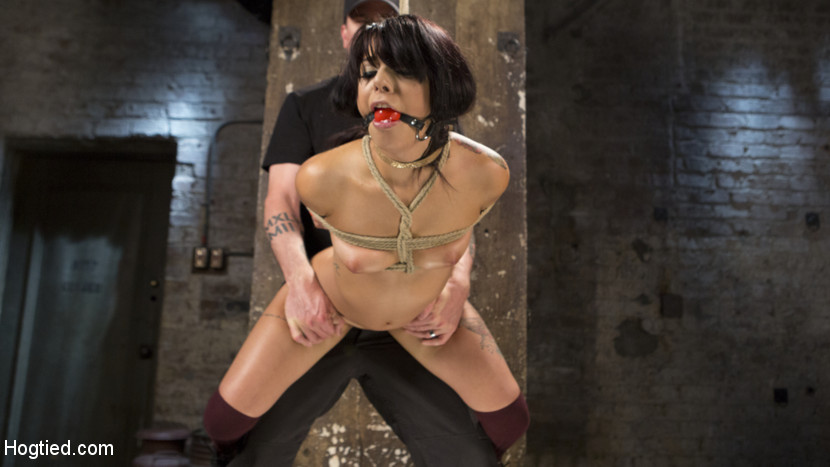 19 year old slut in devastating bondage and anguished. Gina has that look. You know, the one of the girl next door, but acts like the whore down the street...yeah, that look. She is also tough as hell and wants to see how far she can go. The bondage shows off her helpless little anatomy and makes her an submissive little slut. She handles a lot pf the pain and even smiles with some of it, but watching this slut cum is what dreams are made of.