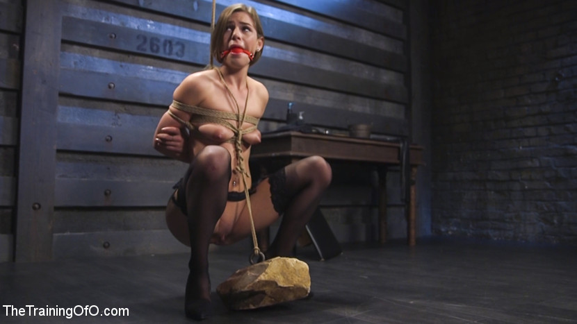 Slave training of sydney cole. Beautiful Sydney Cole submits to her trainer Bill Bailey. Hardcore sex, bondage, gags, stress potions and BDSM