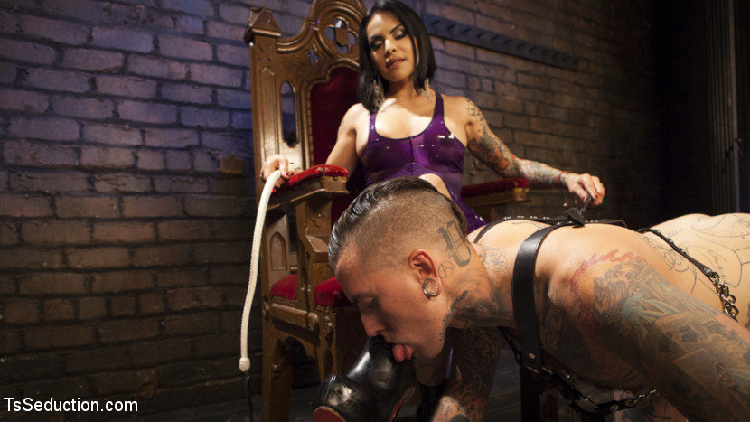 Ts foxxy s dungeon pain slave. Welcome to TS Foxxy's Dungeon where servile pain slave Ruckus is ready to serve! Ruckus is made to worship her charming heels and feet before submitting to brutal dick torment. His cruel dick is stroked by her delicate arches. Finally Foxxy gets what she needs and delivers a cruel deep make love for Ruckus to explode his thick load. The beautiful pain slave lays face first on the filthy floor for Foxxy to drown his face in TS cum.