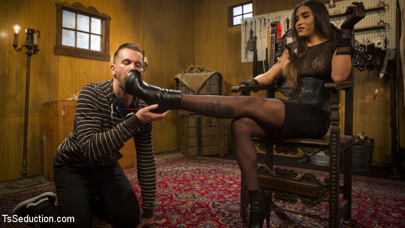 Are you ready to please your dominatrix. Ts Tori Mayes has one very important question for her slave Will Havoc, Are you ready to please your mistress. Yes mistress, Thank You mistress. This male slut is ready to serve a perfect goddess. Starting from the very bottom, Will's tongue licks her leather high heels for some gorgeous foot worship. Does Will deserve a treat or a punishment Corporal punishment, paddling, and cruel slapping turn Will's butthole bright red. Ready to step things up mistress Tori takes Will's face to her cock for deep throat pleasure. mistress demands more and uses Will's cock for ass before releasing huge loads all over Will's tattooed body.